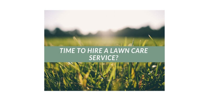 Is It Time To Hire Lawn Care Service