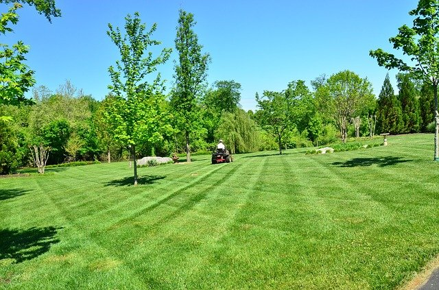How To Choose A Lawn Care Service In Syracuse NY