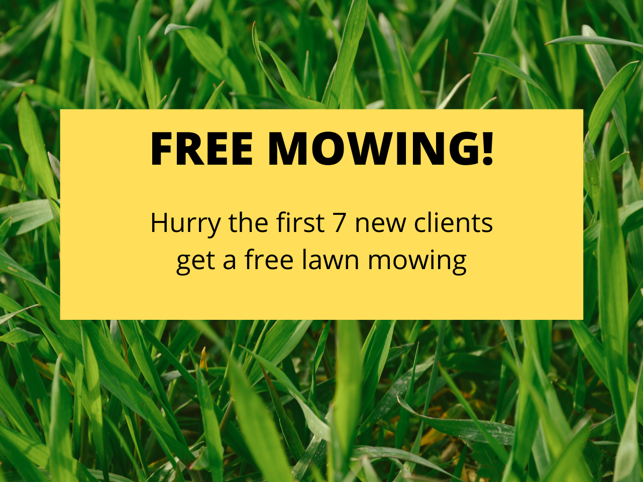 FREE MOWING Syracuse Area