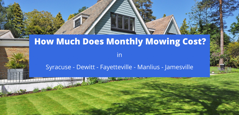 How Much Does Monthly Mowing Cost