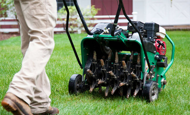 When And Why Aerate Your Lawn In NY
