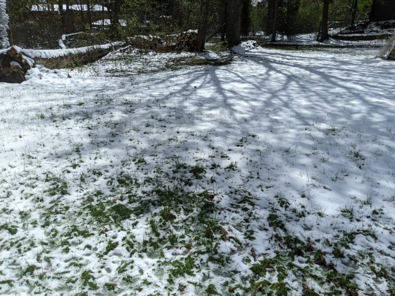 Snow Syracuse NY in April & Mowing Stops